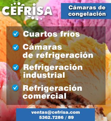Cefrisa, S.A. de C.V.
