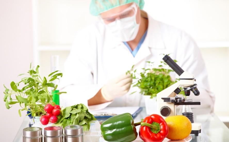 Conservadores para alimentos, métodos y aditivos