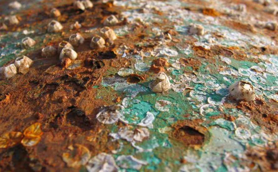 Corrosión en la industria química: problemas y soluciones