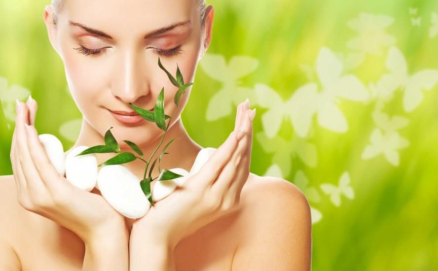 El mercado de los ingredientes naturales y la industria cosmética
