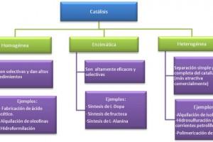 La importancia de los catalizadores en el sector industrial