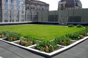 Urbanidad sustentable, hacia las azoteas y muros verdes