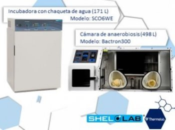 logo de Thermolab Corporation
