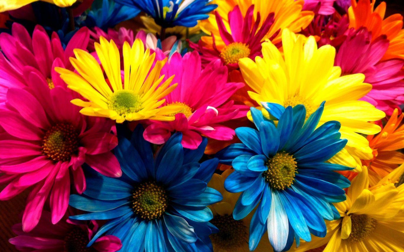 Flores Al Mayoreo