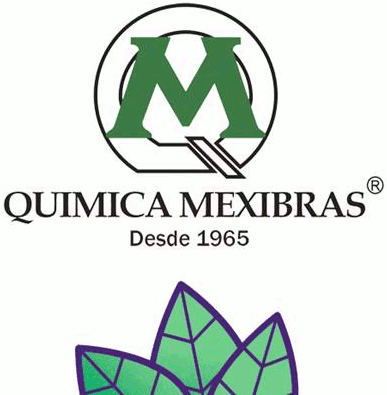 logo de QUIMICA MEXIBRAS / SMART AIR